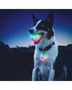 GlowStreak LED-pallo + SpotLit -pantavalo